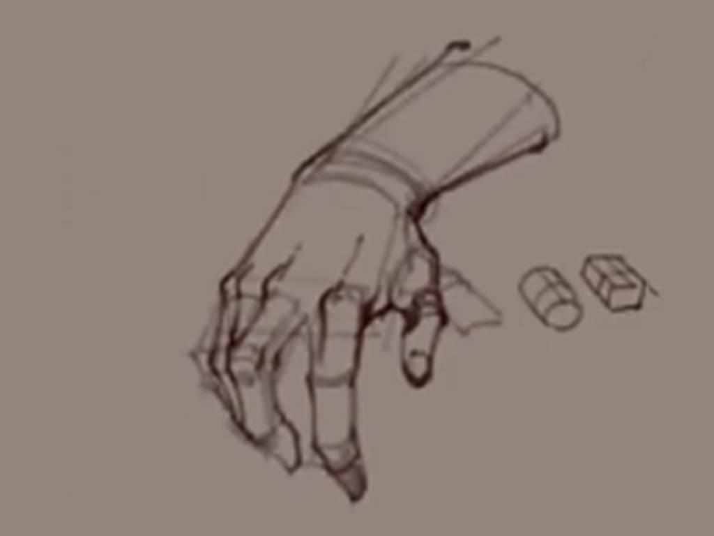 【人体入门】怎么用圆柱体画好人体手部结构