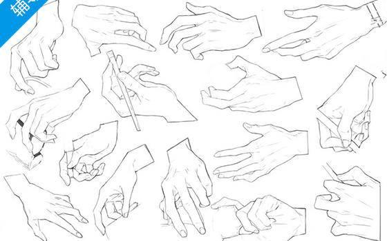如何画不同姿态的手部