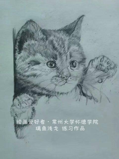 绘画爱好者常州大学怀德学院-璃鱼浅戈_副本.jpg