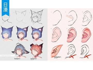 【人体五官】耳朵/猫耳/兔耳/精灵耳7种耳朵SAI教程