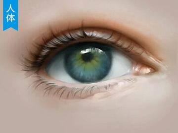 【CG原画】眼睛厚涂画法案例PS教程