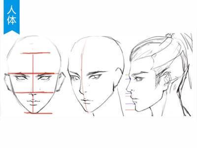 【脸部五官】正侧脸、45°侧脸多角度五官结构分析_绘画教程