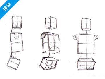 【人体概括】人体基本体块以及比例关系