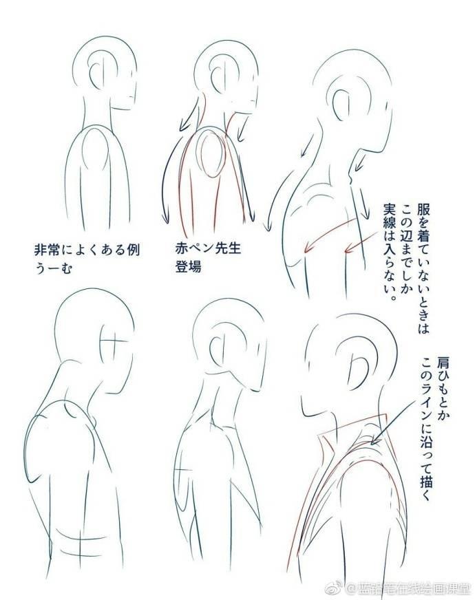 人体头部分析和部分人体结构的绘制技巧