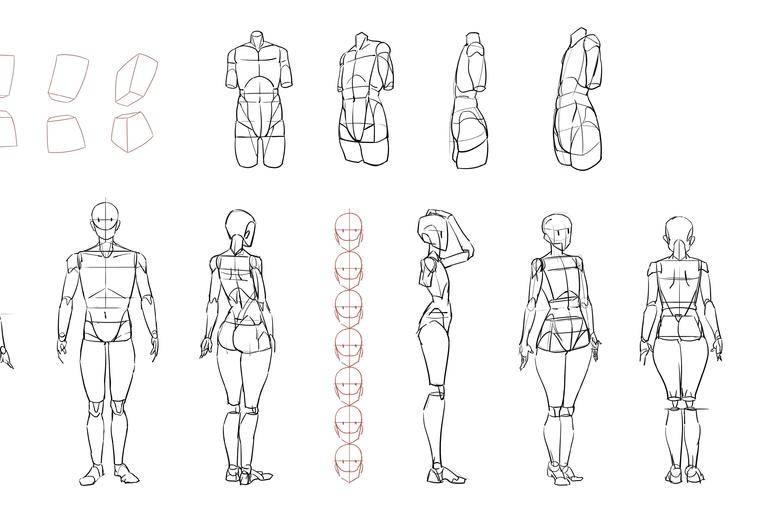 日式插画设计班(赤井羚),三视图概括,正式学员