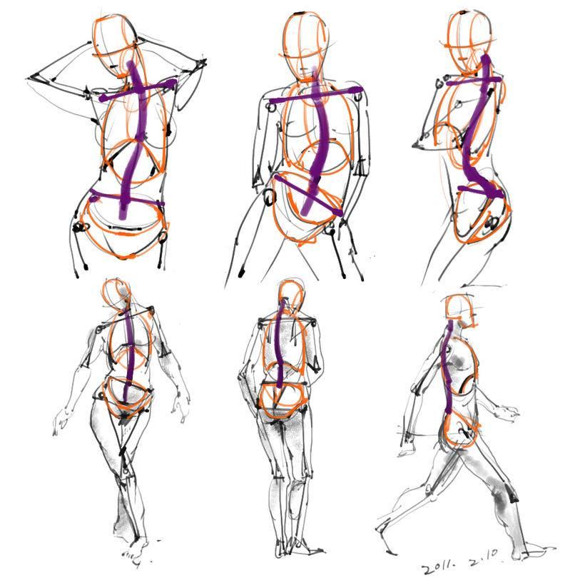 素材包括近三百张高清大图,涵盖人体头像,背部,腿部,手臂各