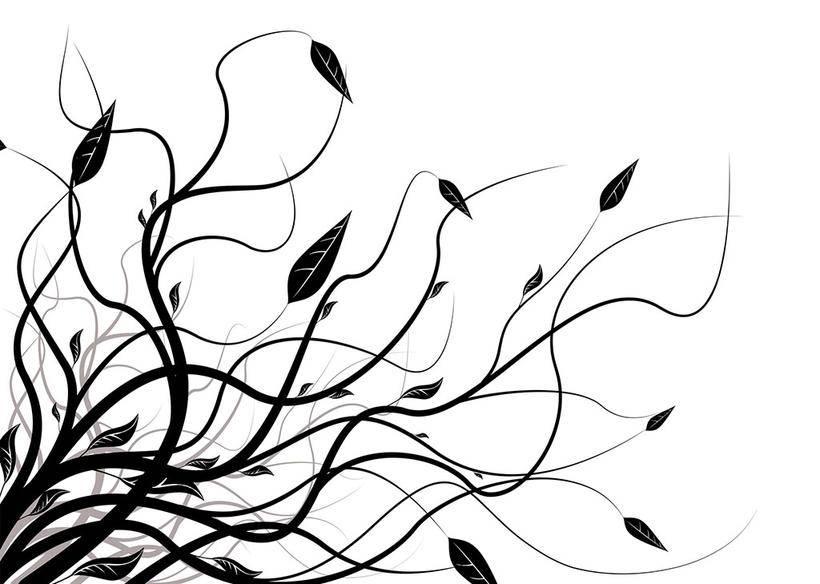 第3期【十分绘画】绘画入门线稿基础SAI教程_绘画教程
