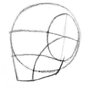 第8期【十分绘画】5分钟学会从各个角度画脸-Proko素描基础教程