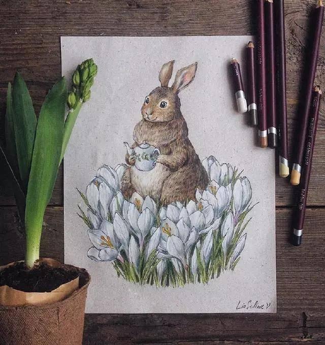 这彩铅笔下的手绘插画,漂亮极了!-资讯-蓝铅笔