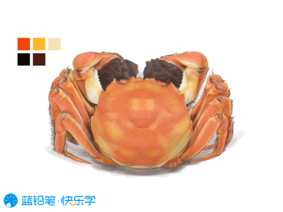 螃蟹的画法:固有色