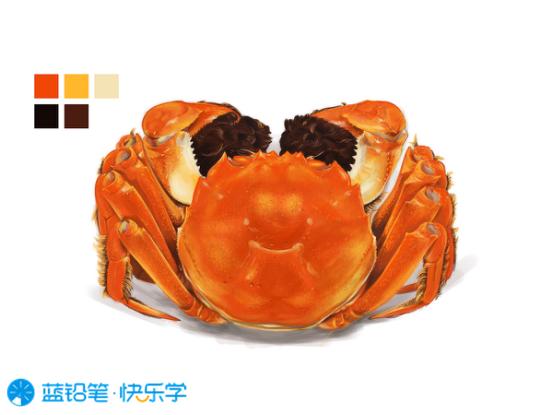 螃蟹的画法:质感
