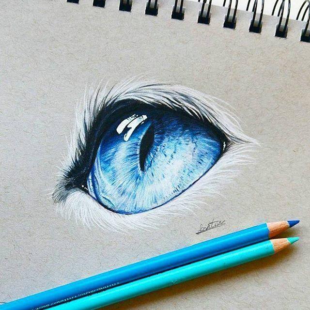 【彩铅】璀璨的猫咪眼睛手绘过程