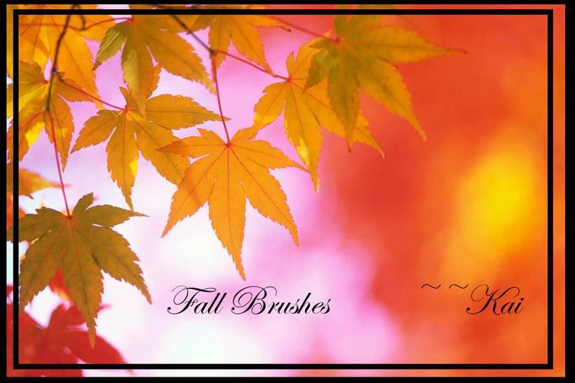 4,秋天的红叶祭效果,红叶,树叶ps叶子笔刷素材