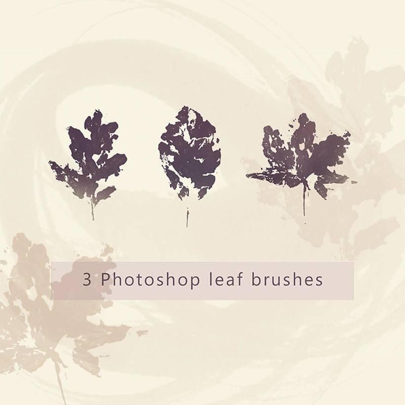 5,橡树树叶,枫叶,秋天枯叶,落叶剪影图形ps笔刷素材