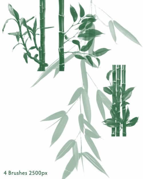 树叶,枫叶,竹叶,绿叶ps笔刷素材分享(附下载)