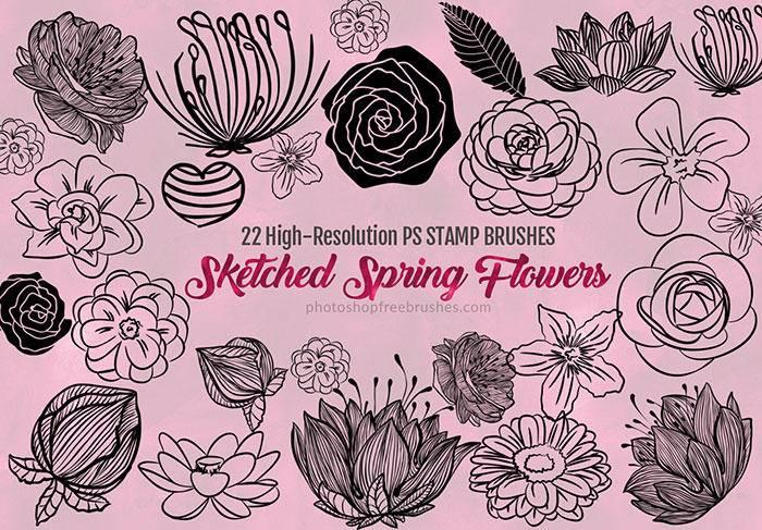 7,22种漂亮的手绘鲜花花朵图案,春季鲜花花纹photoshop笔刷素材