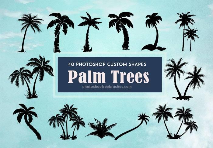 3,40种海边椰子树剪影图形photoshop自定义形状素材