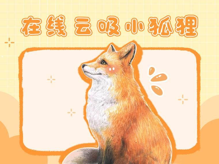优雅的长鼻子,灵动的三角耳,琥珀般通透深邃的眼睛,再加上一身的火红,原来是可爱的小赤狐啊~如何用彩铅画出狐狸细腻的毛发和超写实的质感,跟着星云画画老师一起动手学习吧!